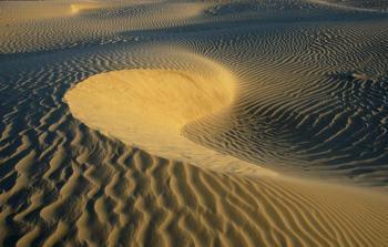 Estels en el desert