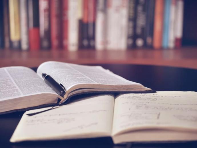 Llegir llibres per aprendre màrqueting i disposar d'una botiga en línia rendible, opcions viables en quarantena