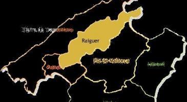 Donat que la comarca escollida la setmana passada per a fer un primer gran torneig de truc després de la pandèmia va ser Es Raiguer, (amb el 25% dels vots de 385 participants) a quin poble voldríeu que es fes?