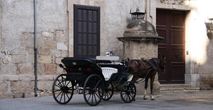 Denuncien la «inacció» de la Policia Local de Palma davant les infraccions dels conductors de les galeres